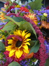Amelia's Flower Share